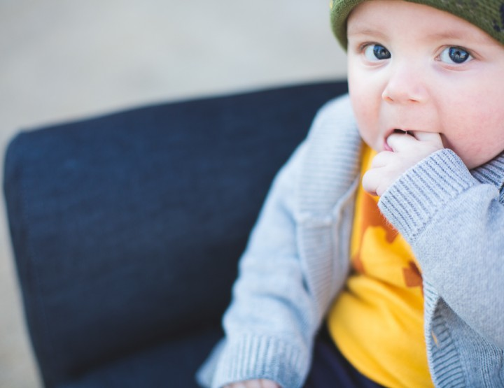 St. Louis Baby Photography | Mini Ha Ha Park