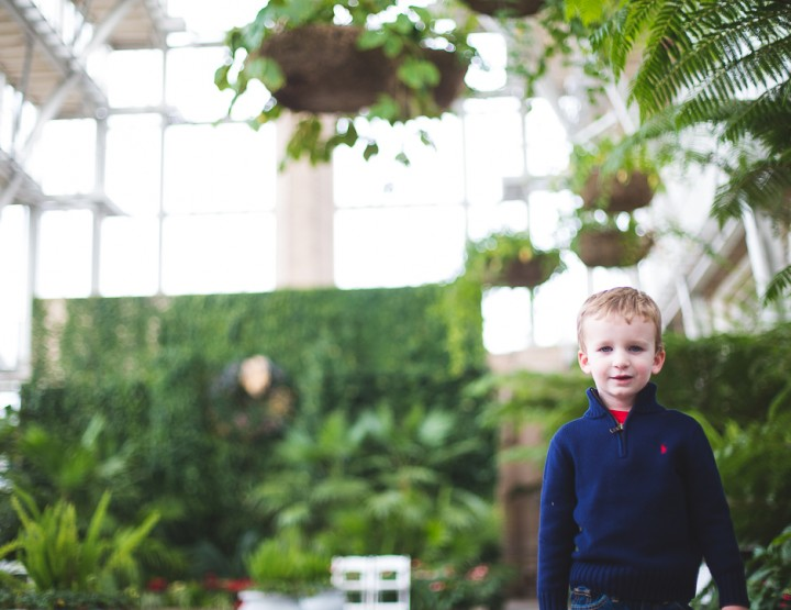 St. Louis Family Photography | Jewel Box in Forest Park
