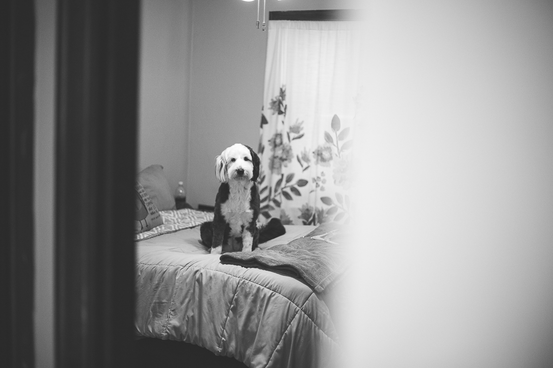 wedding-photography-146