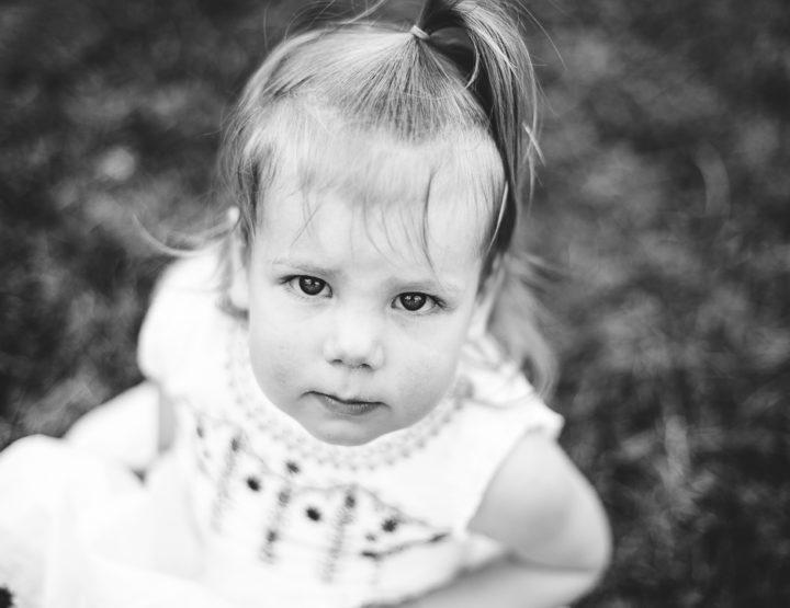 St. Louis Family Photographer | Shaw Park