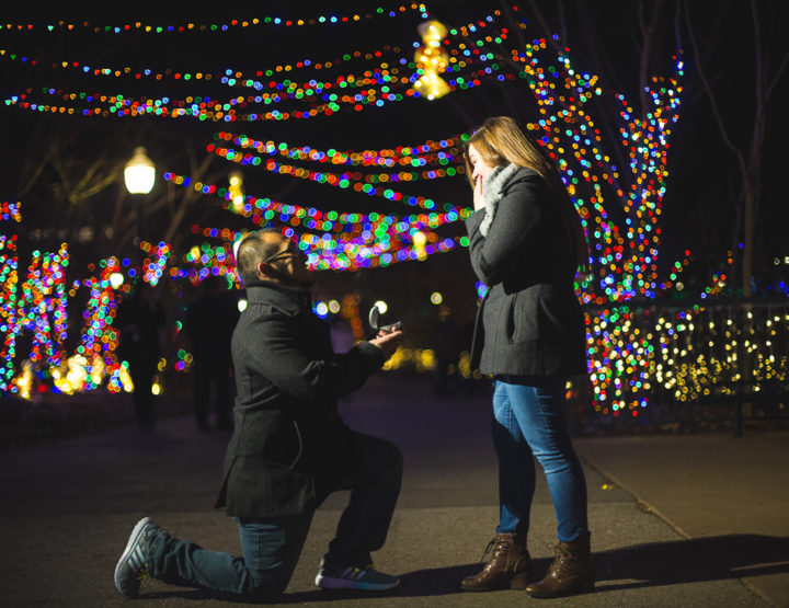 St. Louis Proposal Photography | Zoo Wild Lights