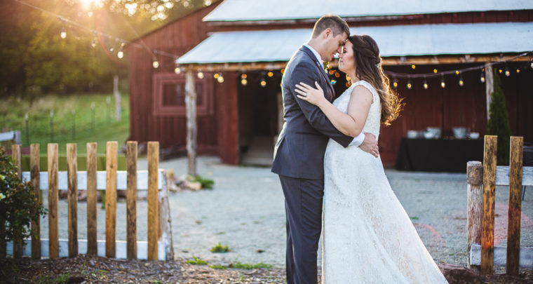 St. Louis Wedding Photography | Dodson Orchards