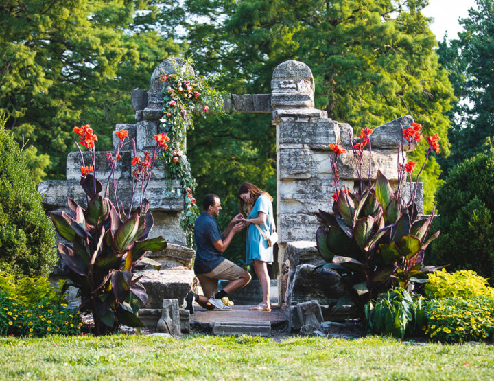 St. Louis Proposal Photography | Tower Grove Park
