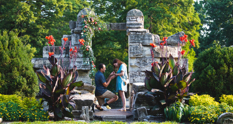 St. Louis Proposal Photography   Tower Grove Park